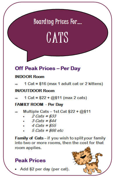 Capture Cat Prices