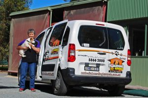 Nathalia Pet Courier